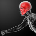 Human skull x ray in red side view Stock Images