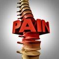 Human Spine Pain