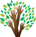 Human tree vector illustration of hands making logo Stock Photo
