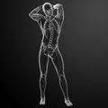 Human in x ray view front Stock Image