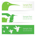 Hummingbird banners vector image of an Stock Photography