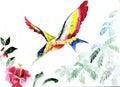 Hummingbird bird icon graphic, icon, watercolor drawing, line, p Royalty Free Stock Photo