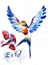 hummingbird bird icon set graphic, icon, watercolor drawing, line, p Royalty Free Stock Photo