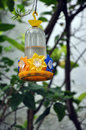 Hummingbird feeder Royalty Free Stock Photography