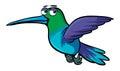 Hummingbird with sad eyes