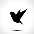 Hummingbird silhouette isolated on white Royalty Free Stock Photo