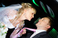 Humorous picture bride and groom Stock Photos