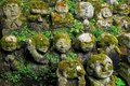 Humorous rakan stone buddha statues with funny faces partially covered by greenery Royalty Free Stock Images