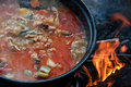 Hungarian fish soup Royalty Free Stock Photo
