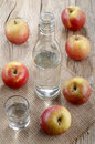 Hungarian palinka made from apple bottle and glass filled with Royalty Free Stock Photography