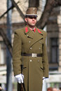 Hungarian solider in uniform Royalty Free Stock Photography