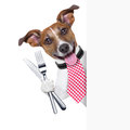 Hungry dog with cutlery waiting for the meal Royalty Free Stock Photos