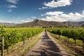 Hunter valley vineyards view of nsw australia Royalty Free Stock Photos