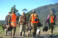 The hunters return a group of friends from their pheasant hunt with plenty of game on west coast of new zealand Royalty Free Stock Photos