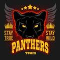 Hunting club sign. Hunter sport team shield symbol. Safari hunt of wild animal panther, logo, star Royalty Free Stock Photo
