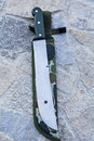 Hunting knife made of stainless steel with military case Stock Photos