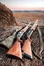 Hunting shotguns on haystack while halt Royalty Free Stock Photo