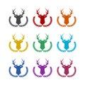 Hunting trophy. Deer head with big antlers in laurel wreath, color set Royalty Free Stock Photo