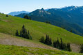 Hurricane ridge hills the of in olympic national park in washington usa Royalty Free Stock Images