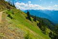 Hurricane Ridge, Olympic National Park, Washington Royalty Free Stock Images