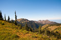 Hurricane ridge in the olympic peninsula Royalty Free Stock Image