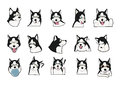 Husky - all expression