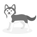 Husky Breed Dog Icon, Flat, Ca...