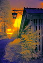 Hut in colored infrared light a wooden and a bush Royalty Free Stock Photo