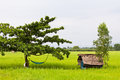 Hut and hammock Royalty Free Stock Photography