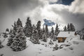 Hut in the mountains surrounded by fir trees Royalty Free Stock Photo