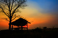 Hut on a sunset with rice field Stock Images
