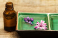 Hyacinth fragrance over wood table Stock Image