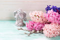 Hyacinths  and  little angel  on  turquoise painted wooden backg Royalty Free Stock Photo