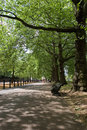 Hyde Park, London Royalty Free Stock Photo