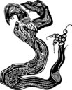 Hydra Clipart Graphic