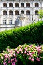 Hydrangea bush and facade of Chateau de Blois Royalty Free Stock Photo