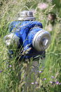 Hydrant overgrown with grass fire blue head and flowers Royalty Free Stock Images