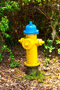 Hydrant in the park yellow blue Stock Photos