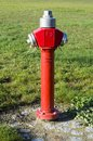 Hydrant red fire with green backround Stock Images