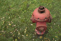 Hydrant red on green lawn Stock Photo