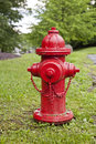Hydrant red on a lawn against trees after rain Royalty Free Stock Photography