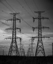 Hydro towers a long line of side by side silhouetted against the skyline Royalty Free Stock Photography