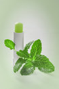 Hygienic lipstick with mint leaves Stock Images