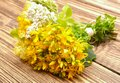 Hypericum Flowers And Yarrow F...