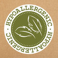 Hypoallergenic green label, badge with leaves for allergy safe products, vector object