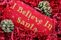 I Believe in Santa Royalty Free Stock Photo