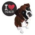 I Love Boxer Royalty Free Stock Photo