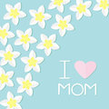 I love mom. Greeting card with heart. Plumeria Tropical flower icon set. Royalty Free Stock Photo