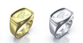 I love my cat pair of rings silver and golden with inscription Stock Image