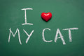 I love my cat short phrase handwritten on chalkboard Royalty Free Stock Photography